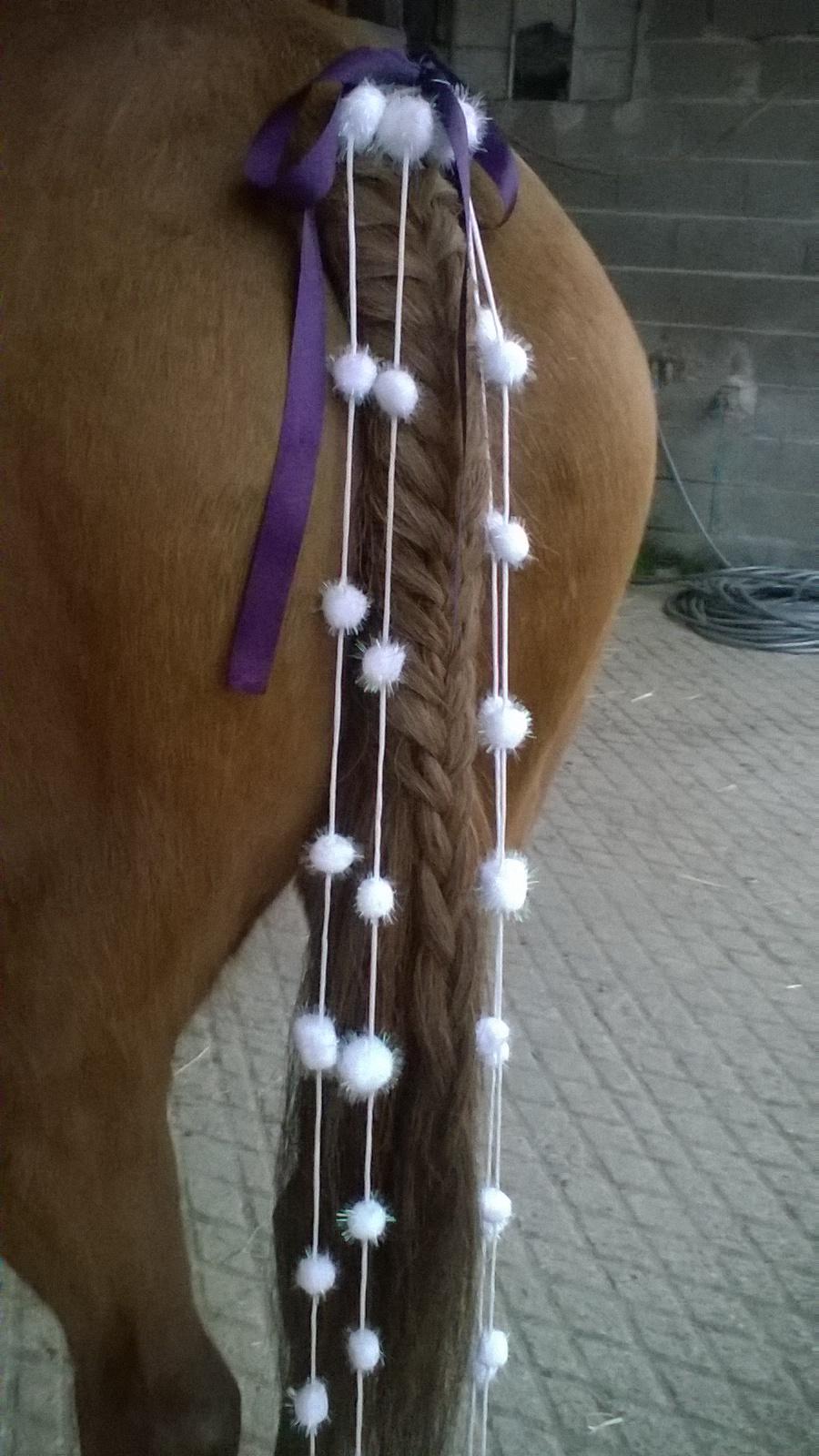 Tresse de queue et crinière cheval